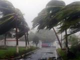 ओडिशात अनेक ठिकाणी वादळी वाऱ्यासह पाऊस पडत आहे. (ANI)
