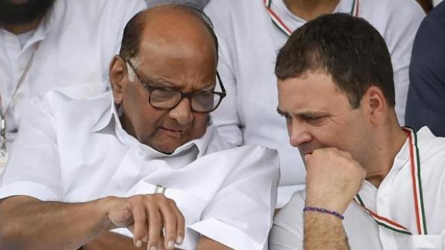 शरद पवार, राहुल गांधी