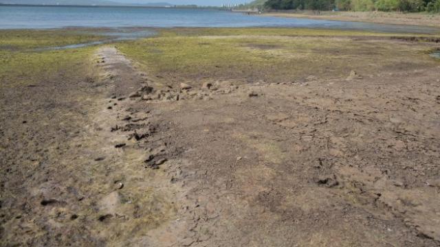 खडकवासला धरणांतील पाणीसाठा खूप कमी झाला आहे. (फोटो - मिलिंद साऊरकर)