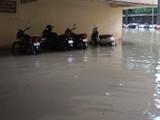 बेलापूरला कोकण भवन परिसरात साचलेले पाणी (बच्चन कुमार, हिंदुस्थान टाइम्स)