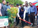 मुख्यमंत्री देवेंद्र फडणवीस वृक्षारोपण करताना