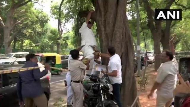 राहुल गांधींच्या मनधरणीसाठी काँग्रेस कार्यकर्त्याचा आत्महत्येचा प्रयत्न (ANI)