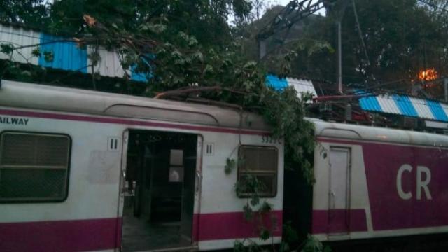मुंबईत ओव्हरहेड वायरवर झाडाची फांदी पडली