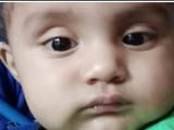 औरंगाबादमध्ये पाण्याच्या बादलीमध्ये पडून 9 महिन्याच्या बाळाचा मृत्यू झाला आहे.