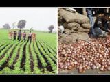 शेती, पर्यावरण आणि समाजाची भूमिका