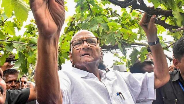 शरद पवार  (PTI)