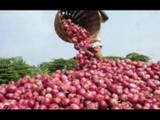 बांगलादेशमध्येही कांद्याचे वांदे, प्रति किलो २२० रुपयांचा दर