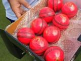दिवस-रात्र कसोटी सामना पिंक चेंडूवर खेळवण्यात येतो.