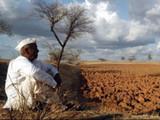 शेतकऱ्यांसाठी ठाकरे सरकाची मोठी घोषणा