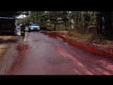 डोंबिवलीतील रस्ते झाले गुलाबी
