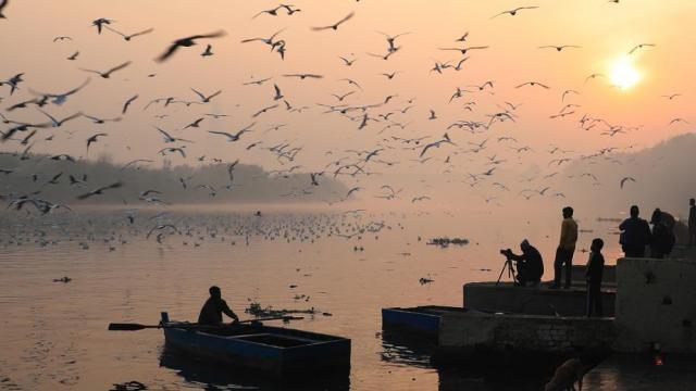 यमुना नदी