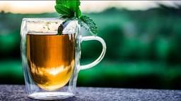 ग्रीन टी पिण्याची योग्य वेळ आणि फायदे जाणून घ्या