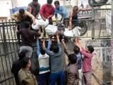 दिल्ली हिंसाचारातील मृतांची संख्या ४६, नाल्यात मिळाले आणखी ४ मृतदेह